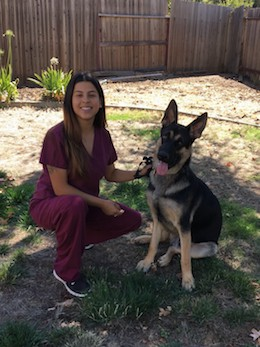 Veterinary Assistants: Cindy